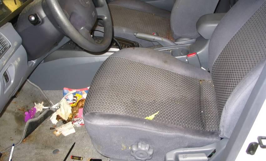 Hindari Sampah di Lantai Mobil